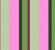 Pink Roses in Anzures 1 Stripes 3V by Christopher Johnson