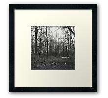 Witchcraft IV Framed Print