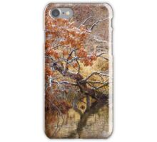 Beauty Along the Bank iPhone Case/Skin