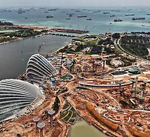 Singapore Gardens by the Bay - Under Construction by Holger Mader