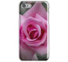 Rose of Tradition iPhone Case/Skin