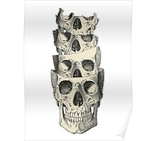 Skull Collage Poster