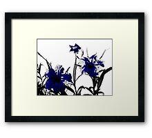 blue gothicus Framed Print
