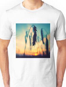 rye in sunset Unisex T-Shirt