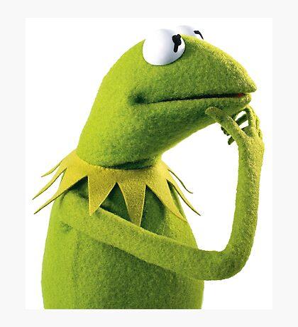 Kermit Contemplating, an aesthetic Photographic Print