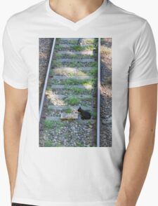 cat on the rails Mens V-Neck T-Shirt