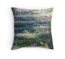 cat on the rails Throw Pillow