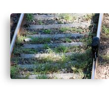 cat on the rails Canvas Print