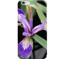 Cape Spear - Lonely Bloom iPhone Case/Skin