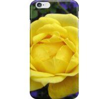 Dreamy Yellow Rose and Purple Lobellia iPhone Case/Skin