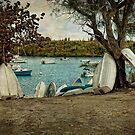 Row of Row Boats by Lucinda Walter