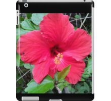 Gleaming Red Hibiscus  iPad Case/Skin