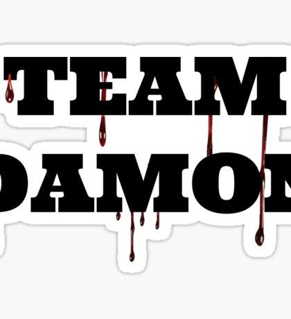 Team Damon Sticker