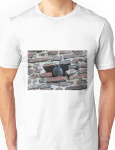 old wall Unisex T-Shirt