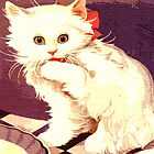 White Cat - Miss Priss by Rob Cox