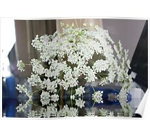 Queen Anne's Lace; Woodside Florist, Whittier, CA USA  Poster
