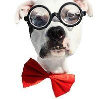 Nerd Dog by Believeabull