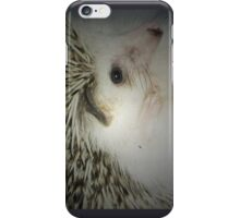 hedgehog curled in a ball iPhone Case/Skin