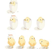 Hatched Chicks - as in baby chickens... by cartoon