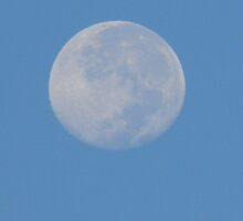 Closest to Earth Full Moon by Navigator