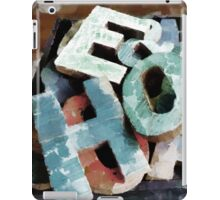 HOG iPad Case/Skin