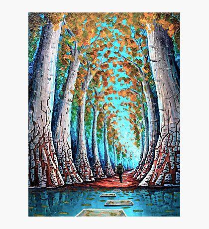 Crimson Creek Photographic Print