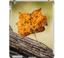 A Fallen Leaf of Summer iPad Case/Skin