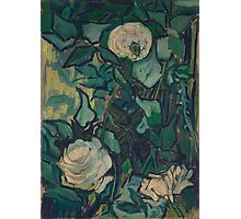 Vincent Van Gogh - Roses And Beetle, 1890 Photographic Print