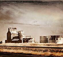 Along the Lonesome Rail. by Sheryl Gerhard