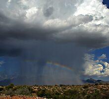 Super Storm by Sheryl Gerhard