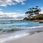 The Bay of Fires at Binalong Bay by Christine Smith