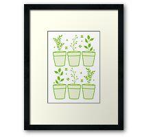 six pot plants Framed Print