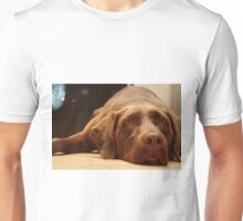 Chocolate Lab Unisex T-Shirt