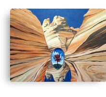 Looking Glass Canvas Print