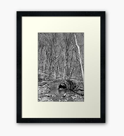 Troll Bridge Framed Print