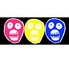 Pan colours Boosh heads Photographic Print