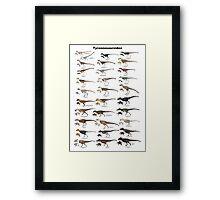 Tyrannosauroid Dinosaurs Framed Print