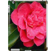 Camelia - full bloom........! iPad Case/Skin