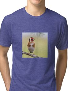 Goldfinch Tri-blend T-Shirt