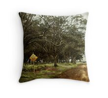 Dry weather road Throw Pillow