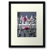 Japanese Windflowers Framed Print
