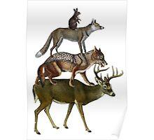 Animals Friends Poster