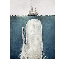 The Whale  Photographic Print