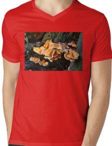 Colorful Fungus Mens V-Neck T-Shirt
