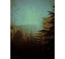 Fog City Photographic Print