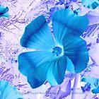 Cerulean Bloom by Stephanie Rachel Seely