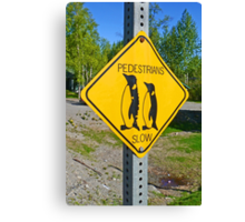Slow Pedestrians Canvas Print