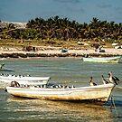 Boats of Progreso by Yukondick