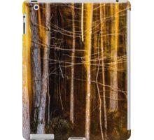dark forest  iPad Case/Skin