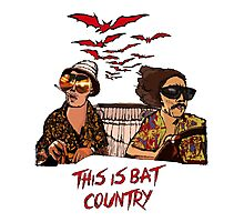 Bat country Photographic Print
